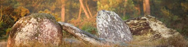 Les Mégalithes de Monteneuf - La Pièce Couverte