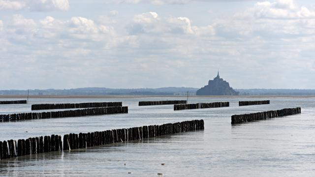 Bouchots de la baie du Mont Saint-Michel